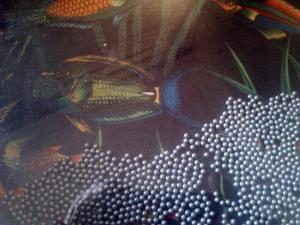 Remo Ocean Drum Aquarium