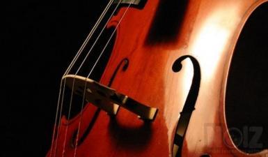 Ζητείται Cello