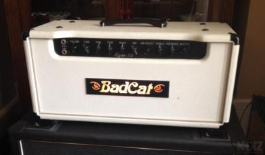 ΠΡΟΣΦΟΡΑ  - Πωλείται BadCat Lynx 50 custom shop