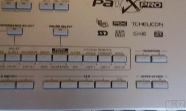 KORG PA1 XPRO 76
