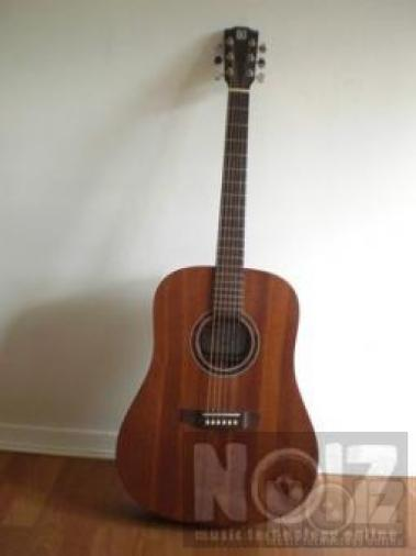 AYERS DM Vintage Acoustic