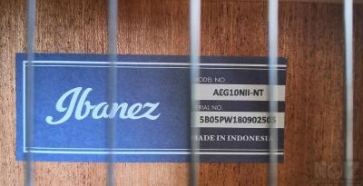 Ηλεκτροκλασσική Ibanez AEG10NII-NT
