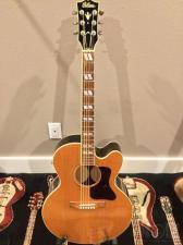 Gibson EC-30 Blues King Electro
