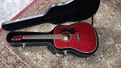 Washburn D11 TR Acoustic