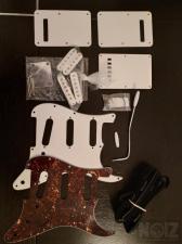 Pickguard, Back plates, Pickups, Tremolo Arm
