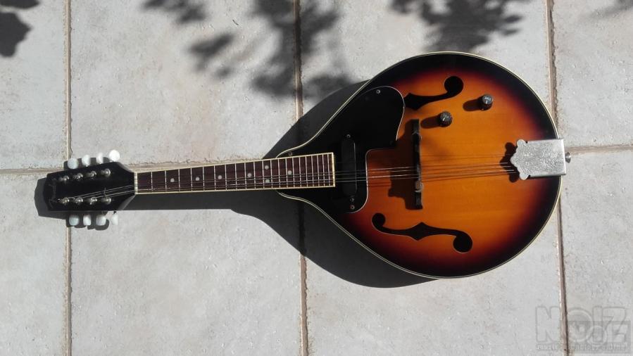 Μαντολίνο  Fender FM52 E sunburst